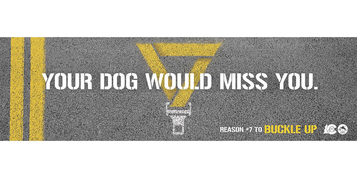 CDOT Seatbelts OOH_v1 20210211 1400x700_Dog
